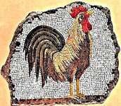 mosaico con gallo fondo travertino